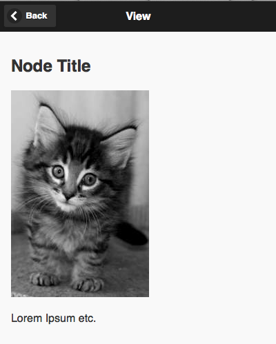 A sample View page showing a node title, body, and image.