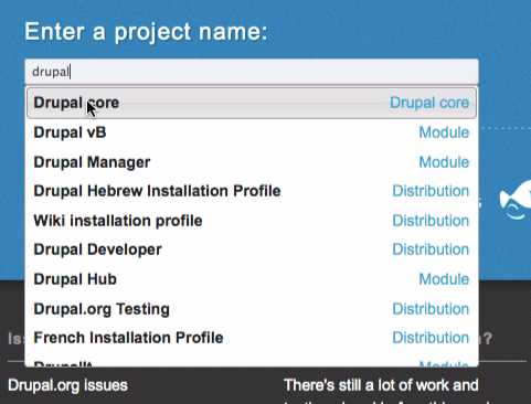 Enter the name of the Drupal project you wish to test.