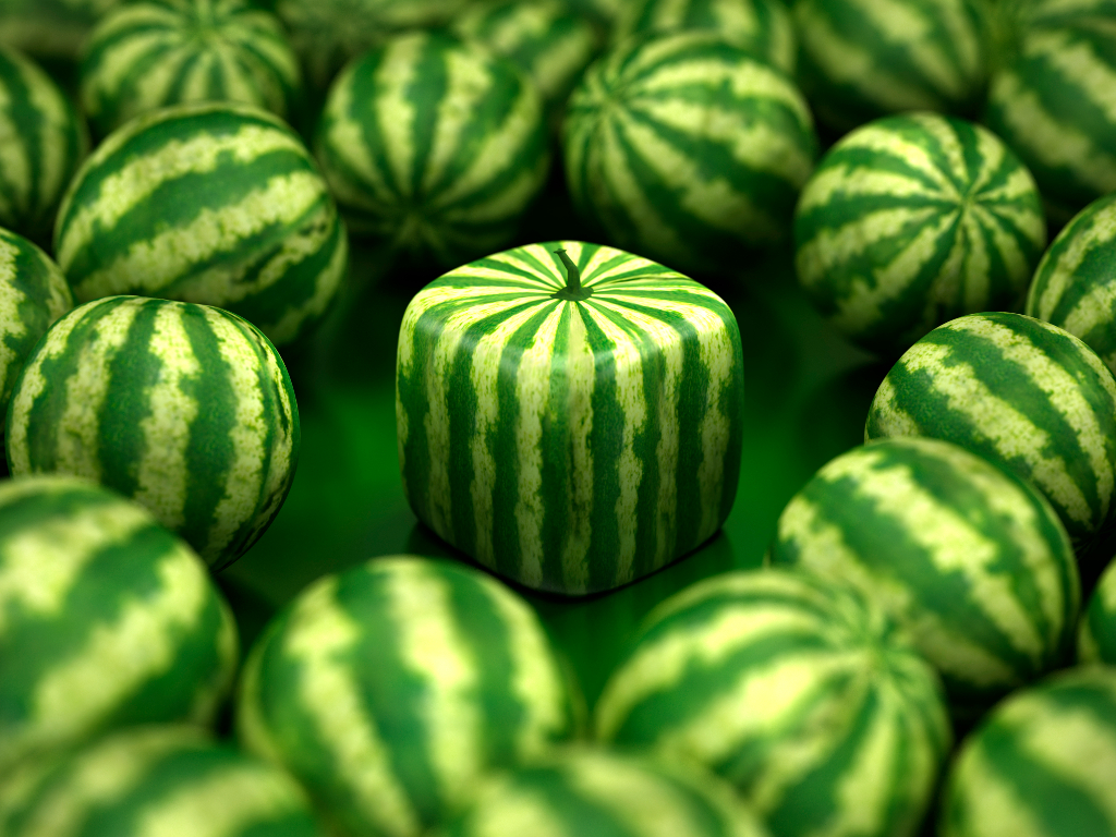 Square Watermelong