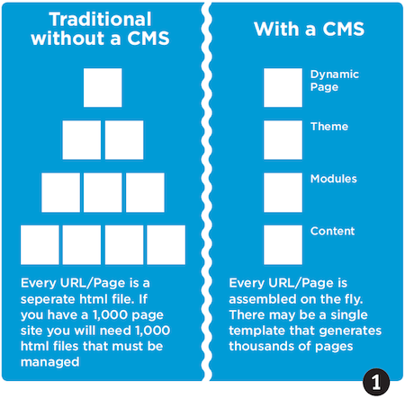 Figure 1, CMS Layout